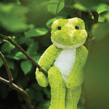 """15"""" Buddy Frog"""