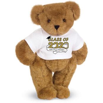 "15"" 2020 Special Edition Graduation Bear"