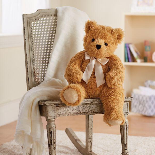 "20"" World's Softest Bear image number 1"