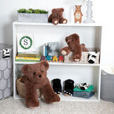 "15"" Belly Bear - Group of 10"", 15"" and 24"" German Chocolate bears in a bookcase image number 4"