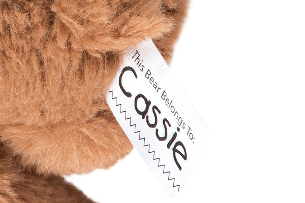 A close up image of the 15-inch Buddy bear fur