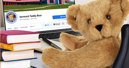 A cute 15-inch Teddy Bearsitting in front of a computer screen